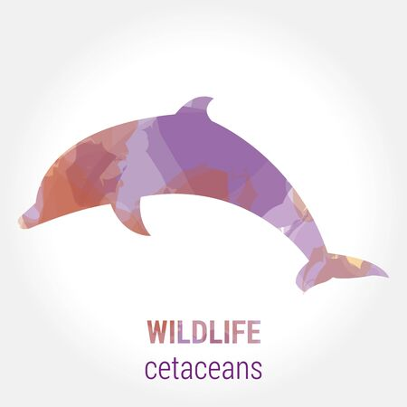 mammals: Wildlife banner on white background. Colored watercolor silhouette cetaceans dolphin .  Poster for mammals, journey, park culture. Illustration