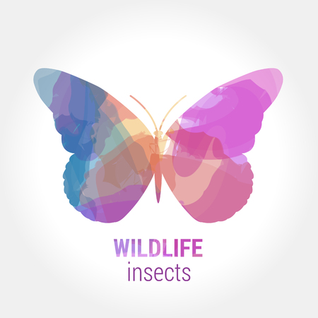 entomology: Wildlife banner on white background. Colored watercolor silhouette insects butterfly.  Poster for entomology, journey, park culture.
