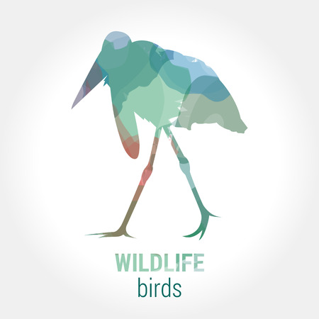 wading: Wildlife banner on white background. Colored watercolor silhouette bird marabou.  Poster for ornithology, journey, park culture.