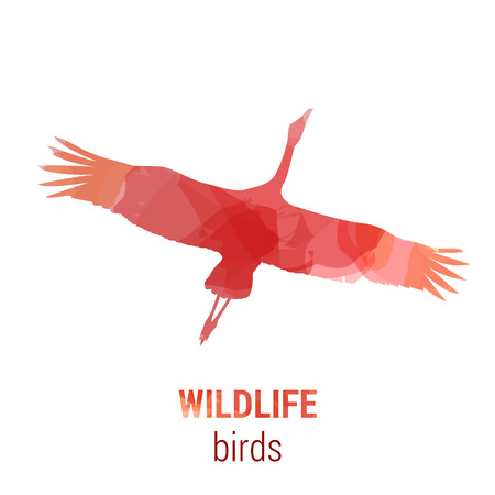 wade: Wildlife banner on white background. Colored watercolor silhouette bird stork or shadoof.  Poster for ornithology, journey, park culture.