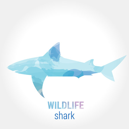 pisciculture: Wildlife banner on white background. Colored watercolor silhouette shark. Poster for pisciculture, journey, park culture.
