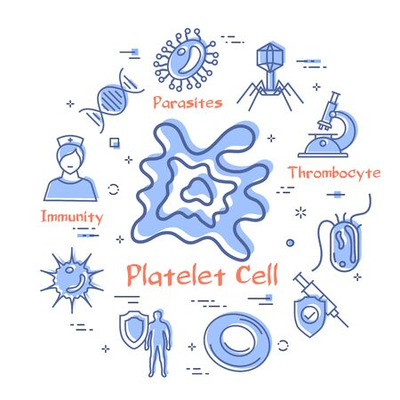 Vector line round banner of bacteria and viruses and medical research. Platelet cell icon in center. Laboratory, blood test, aids and healthy immunity icons with red promo text