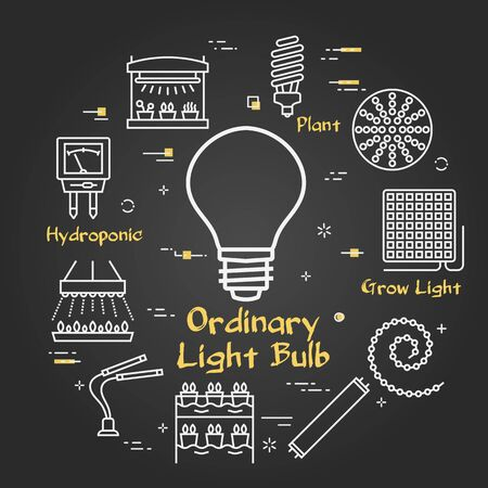 Vector black concept of hydroponic and growth led light - ordinary lamp bulb
