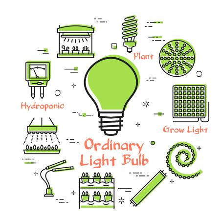 Vector green line concept of hydroponic and growth phyto led light - ordinary lamp bulb icon. Various equipment for illumination and cultivation of crops and plants. Modern innovative technologies