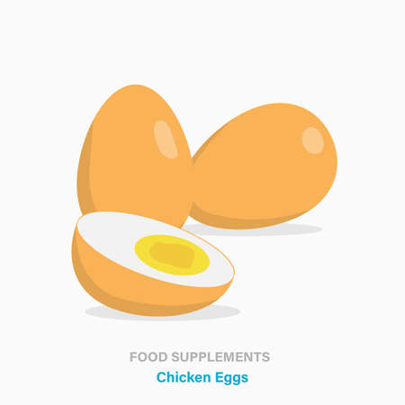 Vector flat isolated icon of food supplements - Chicken Eggs