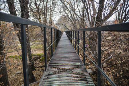 View on the bridge between trees.