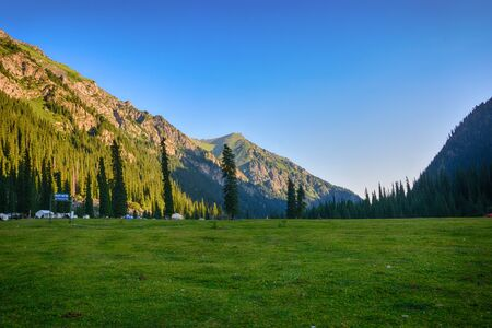 Beautiful landscape forest with rocks, fir trees and blue sky in mountains of Kyrgyzstan. Peaceful outdoor scene.