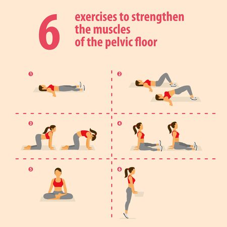 Exercises to strengthen the muscles of the pelvic floor. Vector illustration.  イラスト・ベクター素材