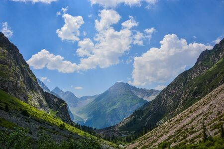Idyllic summer landscape with hiker in the mountains with beautiful fresh green mountain pastures and forest. Concept of outdoor activities and adventure. Tian-Shan, Karakol, Kyrgyzstan.
