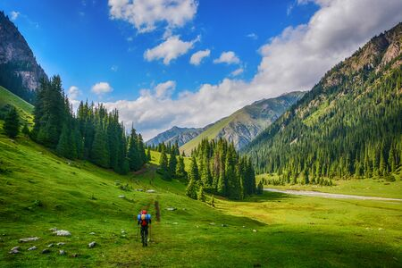 Idyllic summer landscape with hiker in the mountains with beautiful fresh green mountain pastures and forest. Concept of outdoor activities and adventure. Tian-Shan, Karakol, Kyrgyzstan. Stock fotó