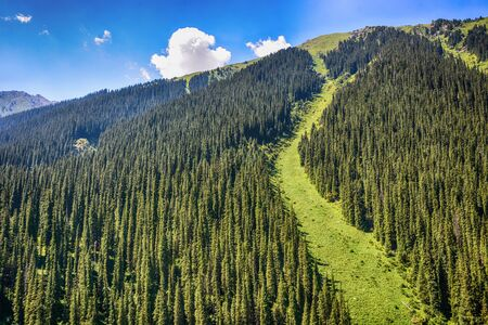 Mountain forest landscape under day sky with clouds. Terskey Alatoo mountains, Tian-Shan, Karakol, Kyrgyzstan Stock fotó
