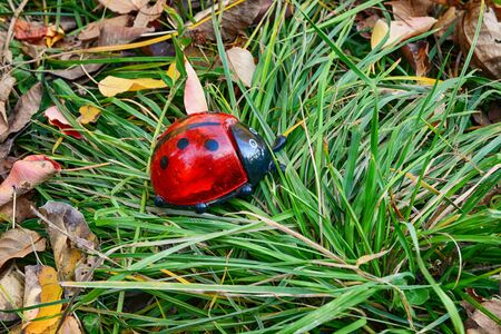 Ladybug toy on fresh green grass. Ecology concept.