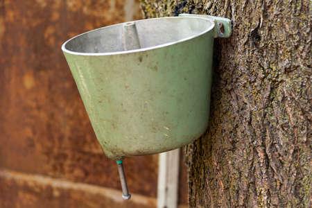 Old green metallic washstand on wood.