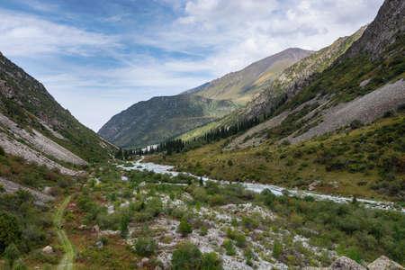 Mountain landscape view in Kyrgyzstan. Green grass in mountain valley view. Mountain panorama. Kyrgyz Alatoo mountains, Tian-Shan, Ala-archa, Kyrgyzstan. Archivio Fotografico - 155358835