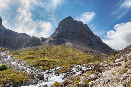 Mountain landscape view in Kyrgyzstan. Green grass in mountain valley view. Mountain panorama. Kyrgyz Alatoo mountains, Tian-Shan, Ala-archa, Kyrgyzstan. Archivio Fotografico - 155358740