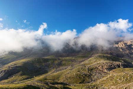 Mountain landscape view in Kyrgyzstan. Green grass in mountain valley view. Mountain panorama. Kyrgyz Alatoo mountains, Tian-Shan, Ala-archa, Kyrgyzstan.