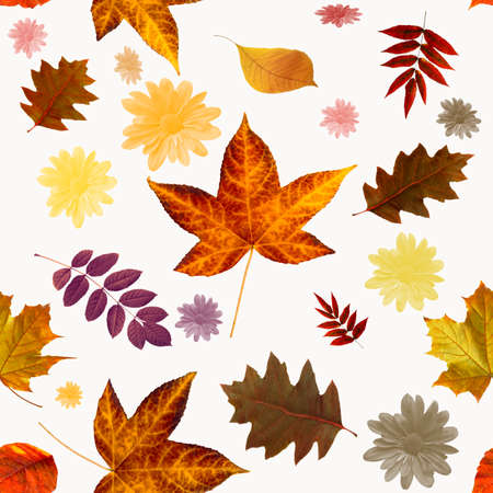 Seamless floral pattern with autumn leaves for packaging, wallpaper, fabric.Seamless autumn leaves pattern. Flower pattern for design.