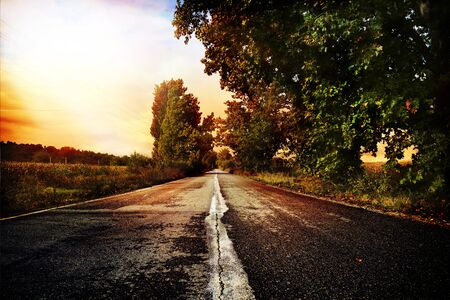 on the lonely road: Beautiful and lonely lonely road in the afternoon
