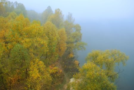 Autumn landscape, trees in a fog on a grey background photo