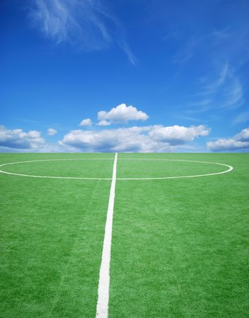 football grass background in light and shadow Stock Photo - 3936479