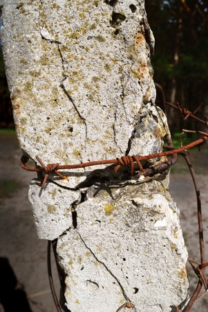 Old post supporting barbed wire Stock Photo - 4237955
