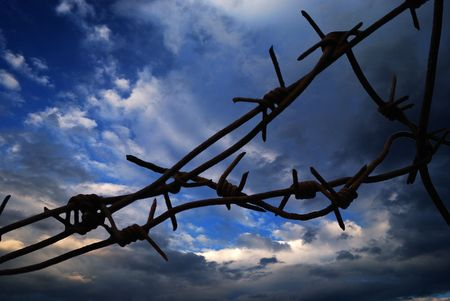 bleack barbed wire closeup on white background Stock Photo - 4979005