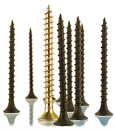 group of black screws and one brass angled screw Stock Photo - 4978869