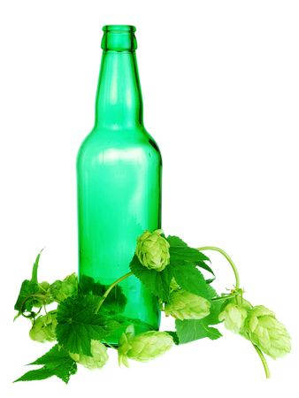 branch of golden hops and beer bottle photo