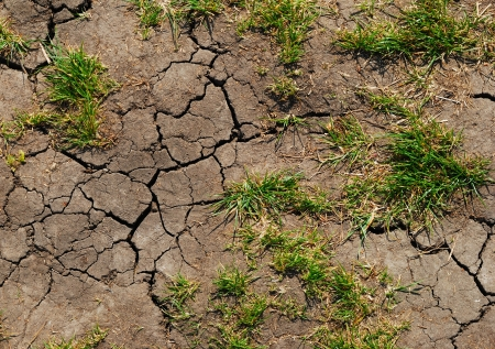 cracks in the dry land, the earth wants water Фото со стока
