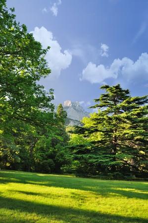 태양 하루, 개척자의 경로에서 산의보기 스톡 콘텐츠