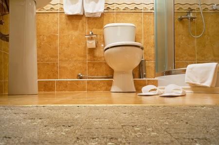 Interior. WC, bathrobe, shower cubicle. Stock Photo - 10507734