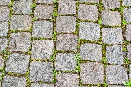 cobble: pavimentazione di ciottoli come sfondo