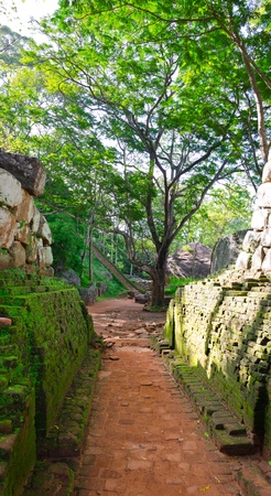 Sigiriya ( Lions rock ) is a large stone and ancient palace ruin in the central  Sri Lanka photo