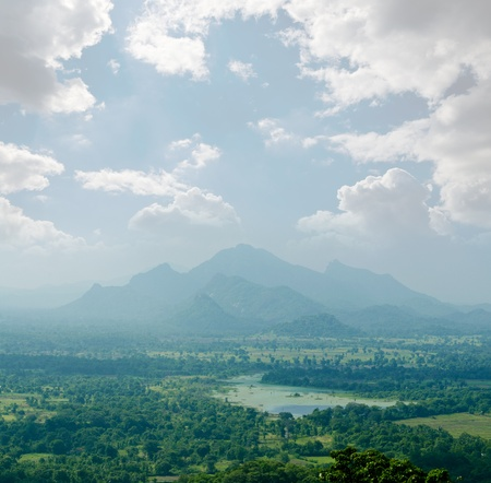 magical view of the tropical jungle in the central  Sri Lanka photo