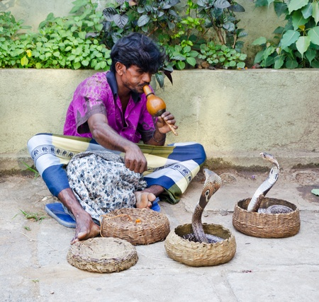 hypnotise: Kandy, Sri Lanka, January 7, 2011  Street charmer shows his art