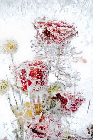 fresh flowers, frozen in a block of ice photo