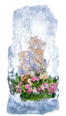 Collage . fresh flowers, frozen in a block of ice photo