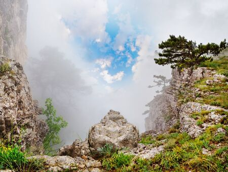 magnificent mountain landscape with clouds and fog relief photo