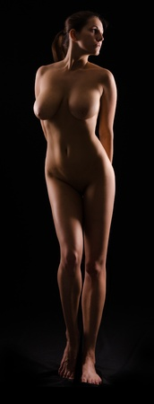 silhouette of a nude female figure on black background photo