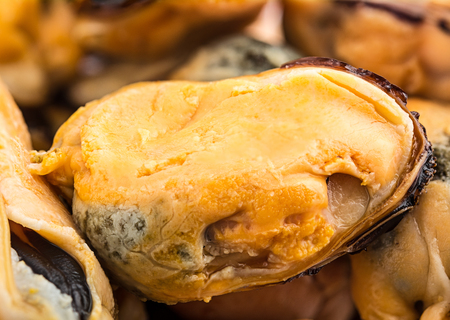seafruit: Smoked Mussels  Macro image collected from a few photos for larger areas of focus