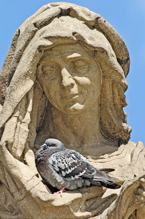 notability: pigeon resting in a secluded place in the folds of clothing sculpture  Prague, Charles Bridge Stock Photo