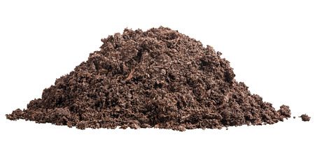 mound of fertile soil for planting Stock Photo