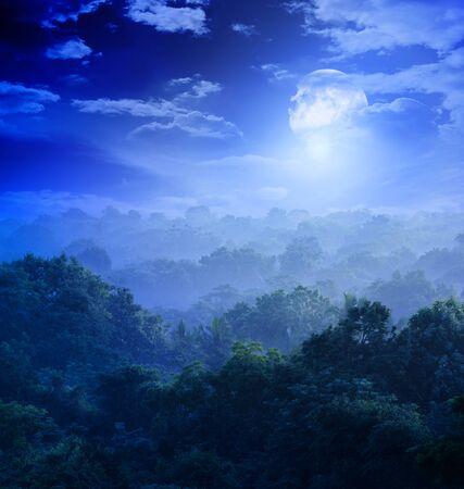 fantasy art: moonlight covers jungles of Sri Lanka