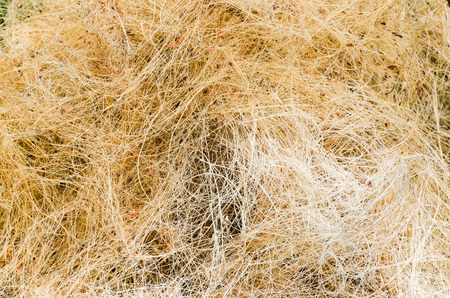 A pile of processed copra fibre waiting to be bailed at a village factory in Sri Lanka