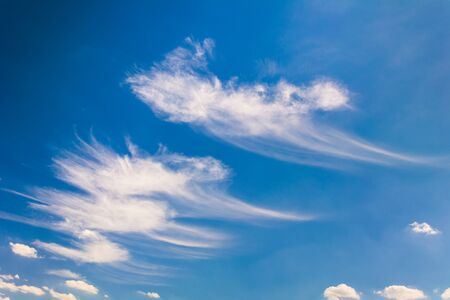 Sample of cirrus clouds in the blue sky