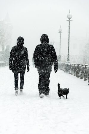 Silhouette of couples out for a walk with the dog. Blizzard. Standard-Bild - 138047610