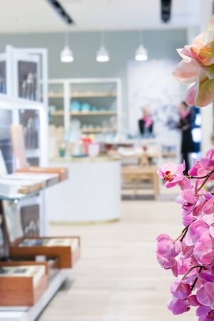 Orchid flowers on the background of shop space Banque d'images