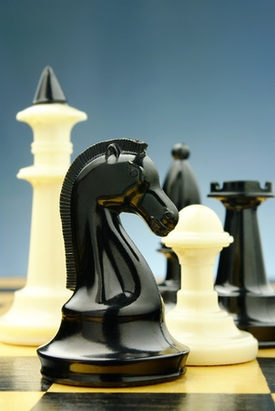 chess knight: board game of chess, chess pieces on a blue background Stock Photo