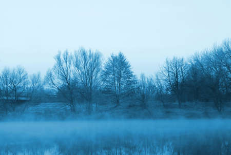 trees and a river in the mist of tinted blue photo
