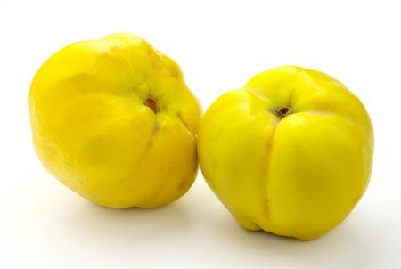 membrillo: Dos membrillos amarillos sobre un fondo blanco